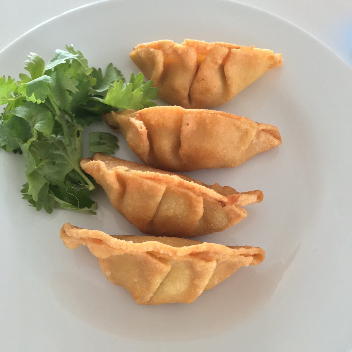 Low Carb Chinese Potstickers